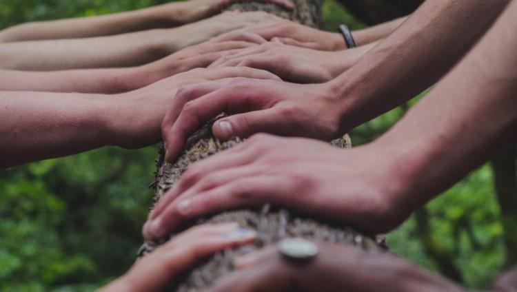 Kädet puunrungon päällä